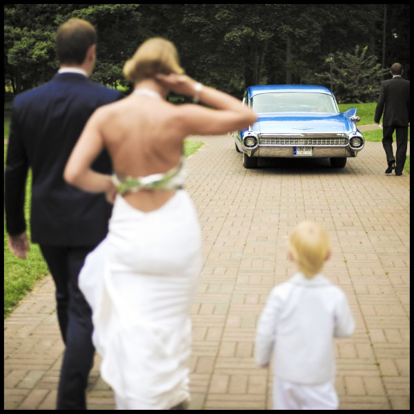 Vestuvių Šventė - Aira ir Gytis
