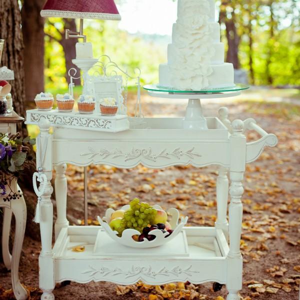 Vestuvių Šventė - Dovilė ir Salys