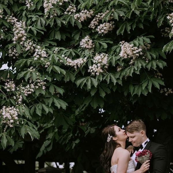 Vestuvių Šventė - Monika ir Martynas
